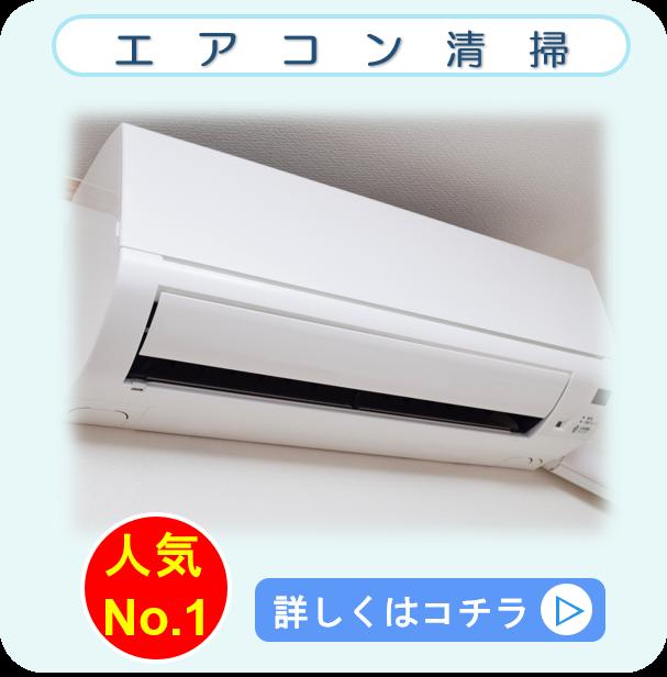 エアコン洗浄 クリーニング クリーンライト
